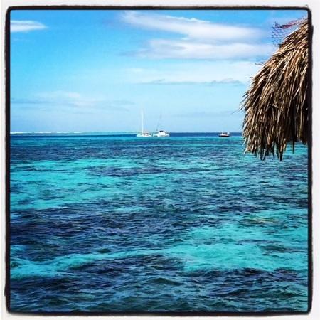 Sofitel Moorea Ia Ora Beach Resort: vue du bungalow...