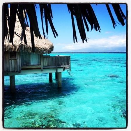 Sofitel Moorea Ia Ora Beach Resort: reveil....