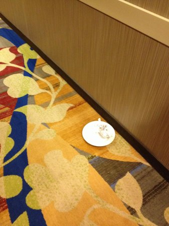 Hilton Garden Inn Houston NW America Plaza: Plate on floor day 1,2 and 3