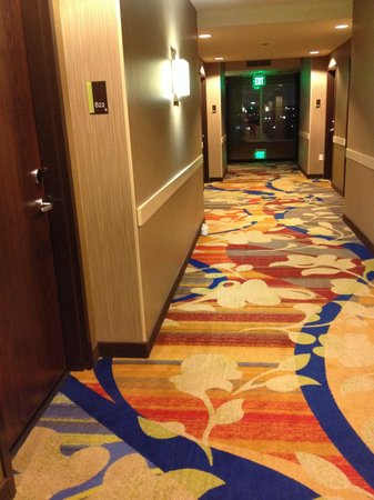 Hilton Garden Inn Houston NW America Plaza: Cup in hall day 1,2 and 3