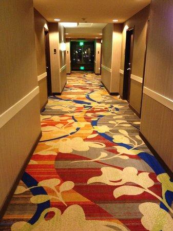 Hilton Garden Inn Houston NW America Plaza : Hallway