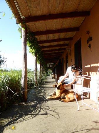 El Galope Farm & Hostel : 1