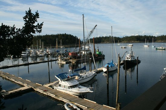 Page's Resort and Marina : The pile driver has been at Page's this spring. 20 new transient slips for visiting boaters.