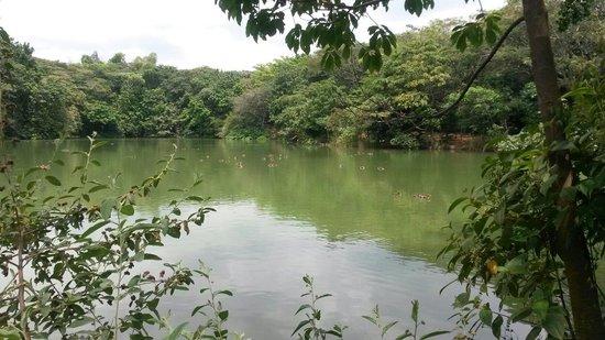 Ecoparque de las Garzas: Mónica Becerra.  Parque de las Garzas