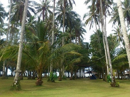 Neverland Beach Resort : View from the sea view bungalow