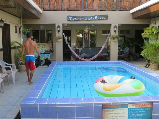 Hotel Perico Azul: Pool Area