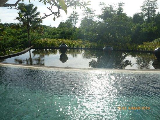 Gending Kedis Villas & Spa Estate: Great pool view