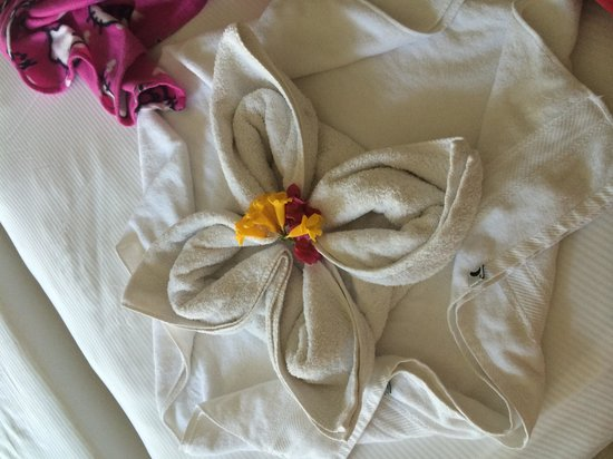 Hilton Sharks Bay Resort : Towel shape