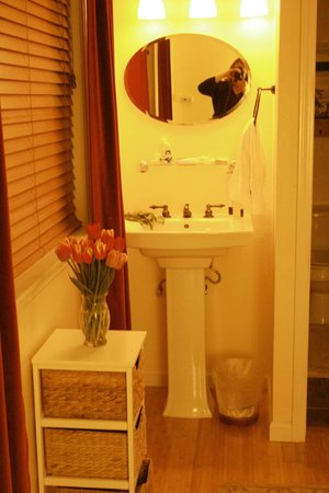 Argyle House Bed and Breakfast : Sink, etc. at Marilee (sink is in main room, separate from toilet and shower)
