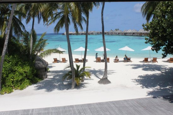 W Maldives: It's idyllic