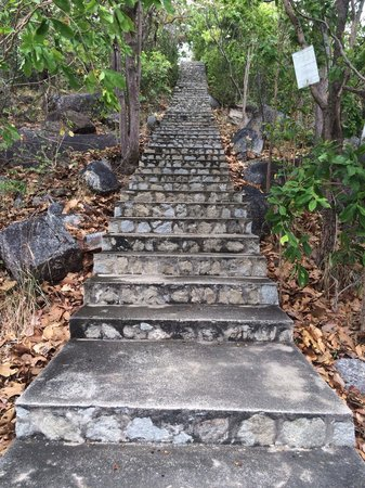 Wat Phuttha Chaiyo: Лестница на вершину холма. По силам?