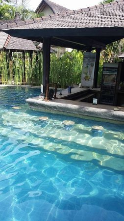 Hotel Vila Lumbung : The swim up bar