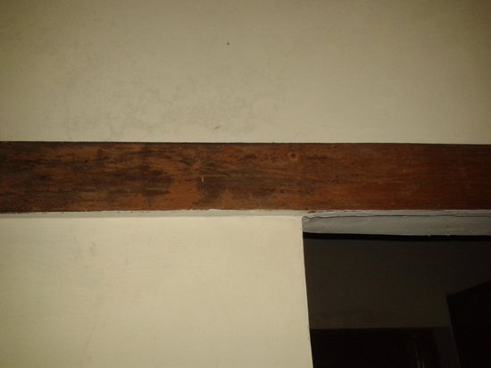 Maya The Forest Resort: Seepage on Walls showing on Wood Panels