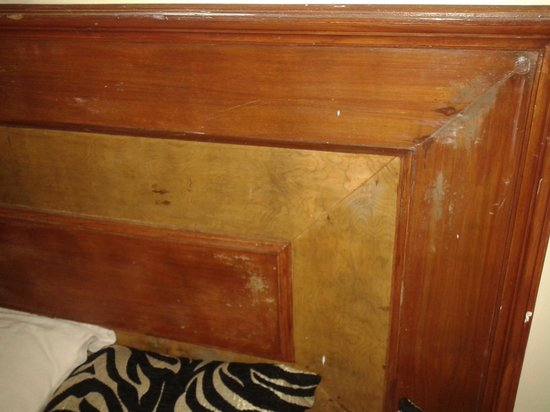 Maya The Forest Resort: Seepage on Walls showing on Bed Bad Wooden Panel