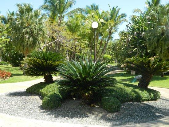 Catalonia Bavaro Beach, Casino & Golf Resort : территория