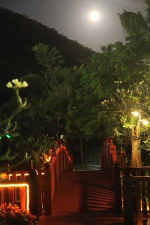 Cactus Resort Sanya by Gloria: Отель вечером