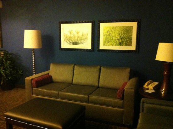 Embassy Suites by Hilton Atlanta - Buckhead: living room