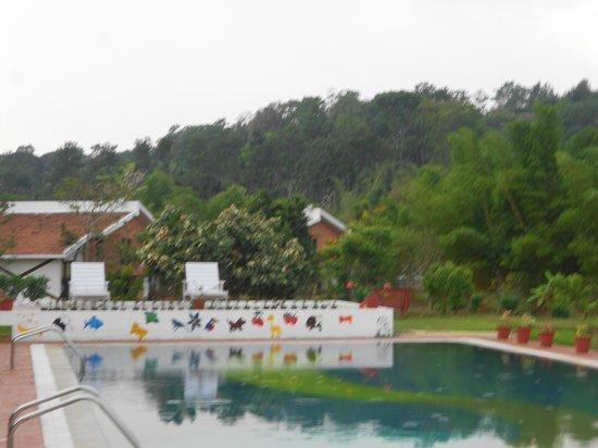 Kadkani River Resort: Resort view from Pool area