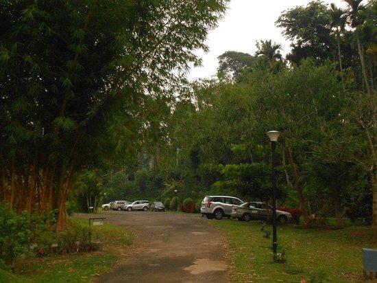 Kadkani River Resort: Entrance to the resort