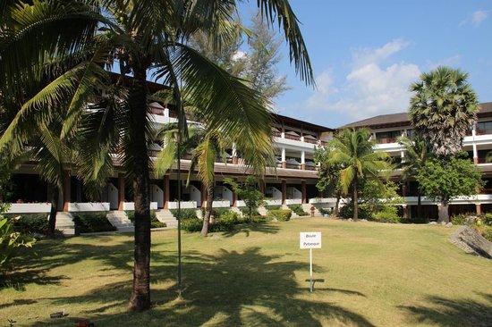 Sunprime Kamala Beach : Les chambres côté plage
