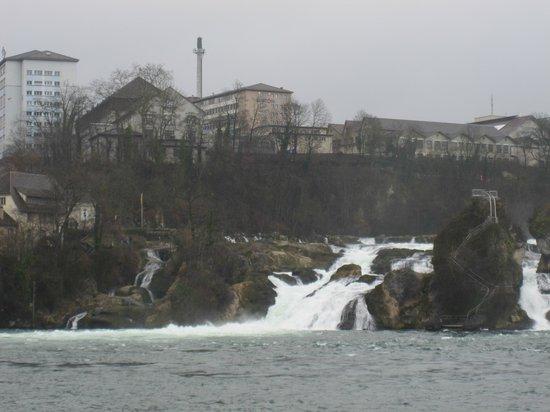 Rhine Falls : Водопад