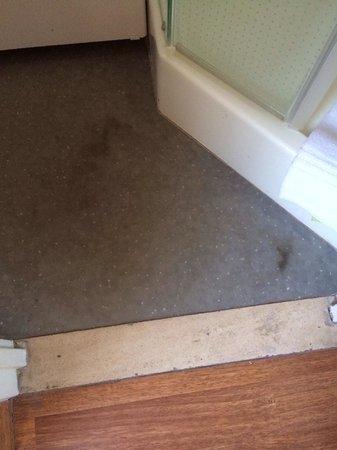 Ibis Tour Eiffel Cambronne: Mouldy bathroom floor