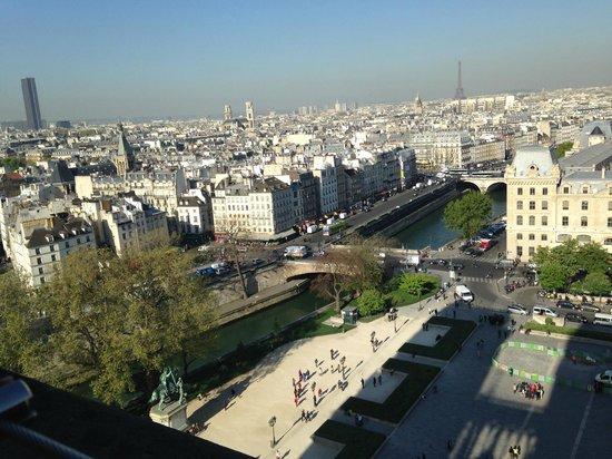 Tours de la Cathedrale Notre-Dame : Сена