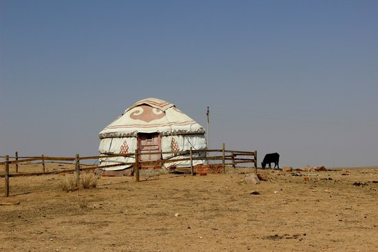 Anda Guesthouse : yurt in grasslands