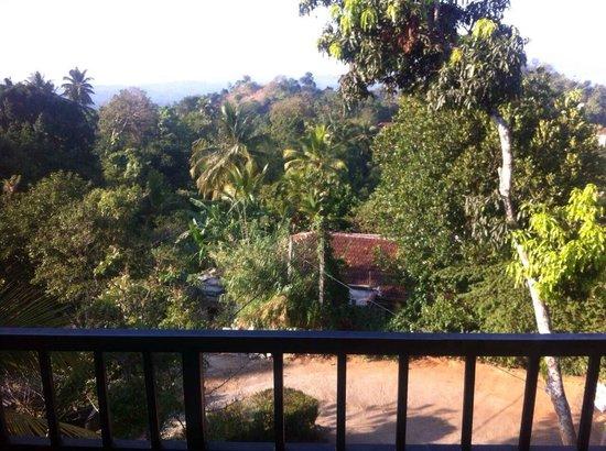 Blue Haven Guest House : vue du balcon