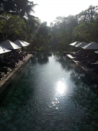 Maya Ubud Resort & Spa: One of the main pools at Maya.