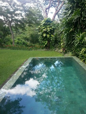 Maya Ubud Resort & Spa: Our in room pool