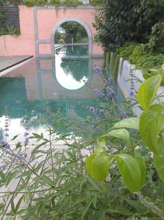 La Vecchia Quercia: La nostra piscina immersa nel verde della tenuta