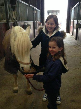 Way Barton: Meeting Ozzie the very friendly pony