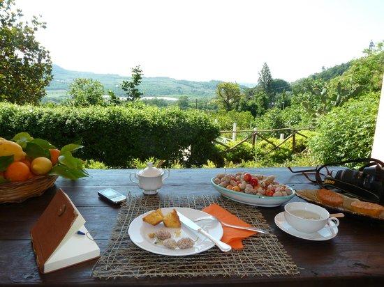La Vecchia Quercia: Colazione con panorama sul verde