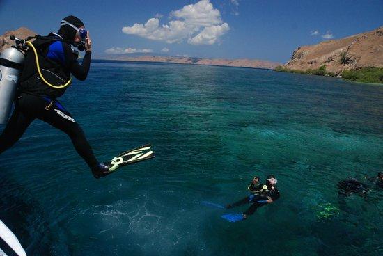 Lagona Divers