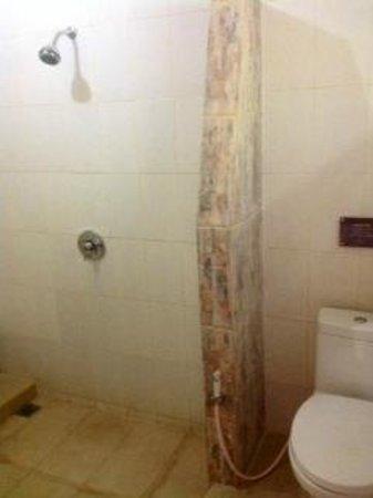 Beji Ubud Resort: Bathroom