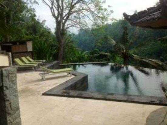 Beji Ubud Resort: Lower pool area