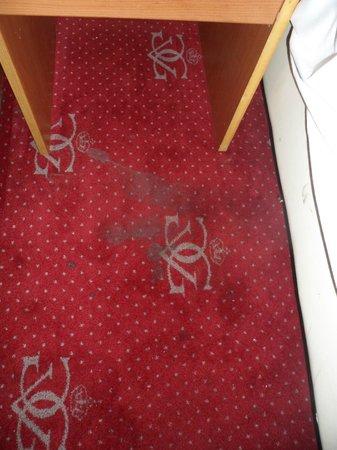 Hotel Albert II : Taches sur le tapis de la chambre