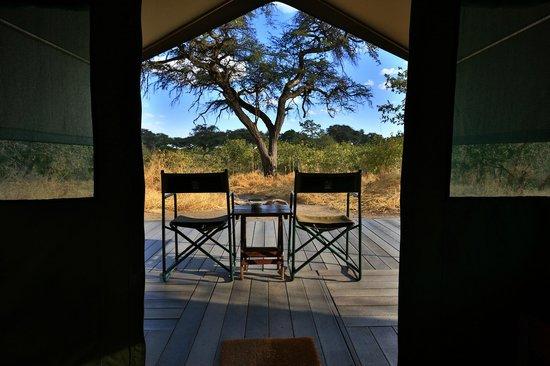 Mogothlo Safari Lodge: View out of room