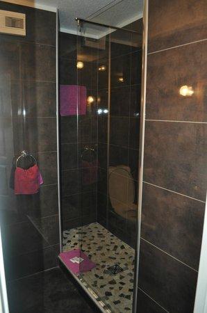 Hotel De La Couronne : douche