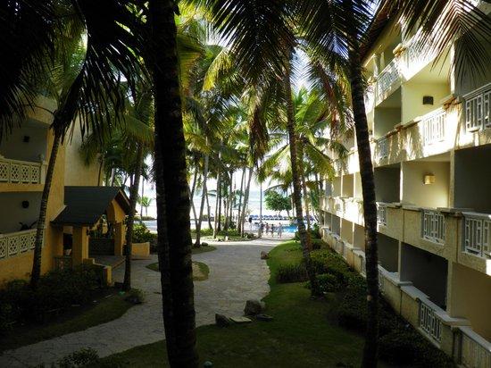 Coral Costa Caribe Resort & Spa: vue de la chambre ..207
