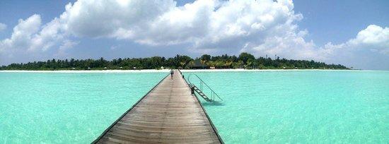 Holiday Island Resort & Spa : панорамка )
