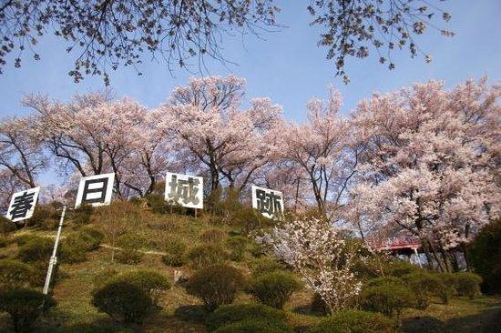 Kasuga Park: 春日公園