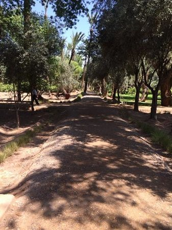 Cyber Parc Arsat Moulay Abdeslam : allees du cyber park