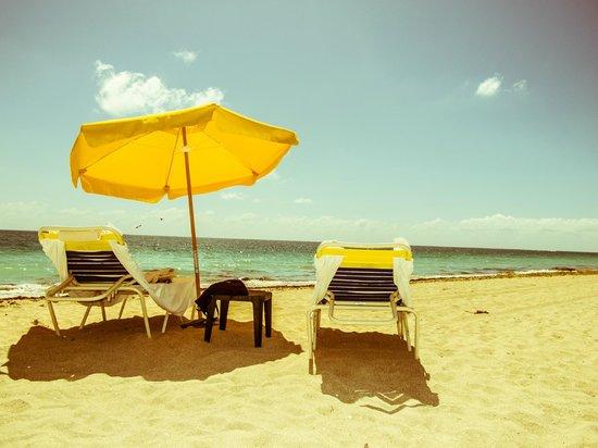 Bal Harbour Beach: Still life on the beach