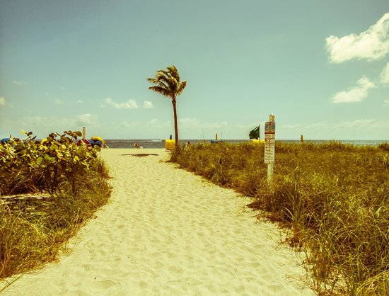 Bal Harbour Beach: The path from the hotel to the beach