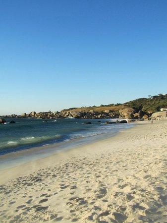 Ocean Lounge: camps bay