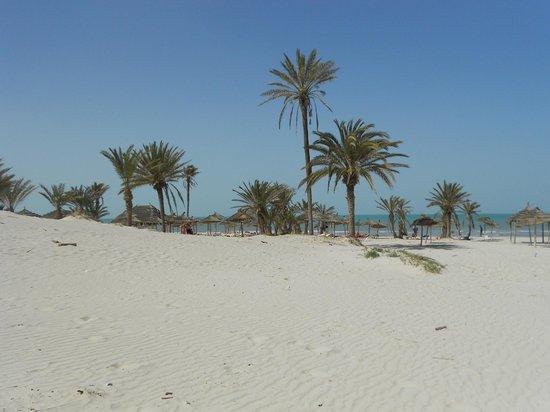 Djerba Golf Resort & Spa: Les abords de la plage