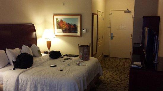 Hilton Garden Inn LAX/El Segundo: King bed room