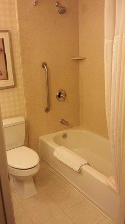 Hilton Garden Inn LAX/El Segundo: King bed room bathroom